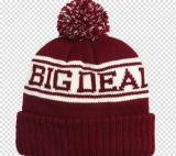 Knitted Beanie Cap/Hat-ADCH1010
