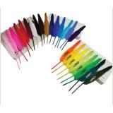 Feather Pen -ADWD5146